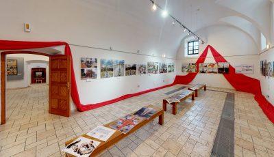 Виставка «Мрії на майбутнє» народного художника України Анатолія Гайдамаки